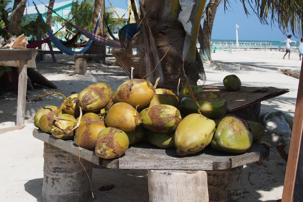 Niemand hat die Kokosnuss geklaut.